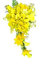 Maravilhoso bouquet estilo cascata confeccionado com orqúideas cattleya, chuva de ouro, dephale e as imponentes callas amarelas.
