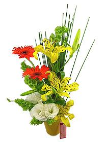 Flores Floricultura Presentes - CALEIDOSCÓPIO - Este colorido e alegre arranjo é composto por gérberas, lisianthus, lírios, molucella e junco . Sua base é de alumínio amarela. Tamanho: 40 x 25 cm