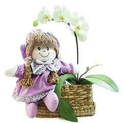 Linda orquidea phalaenopsis branca acompanhada de uma graciosa boneca de pano em tons suaves de cor de lilás.