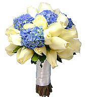 Bouquet estilo redondo, confeccionado com rosas brancas importadas e hortências azuis.