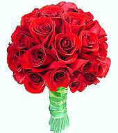 B.Noiva - Rosas Importadas
