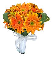 Gérberas e alstroemérias importadas de cor laranja, compõem este bouquet com acabamento em folhagens, cetim branco e laço.
