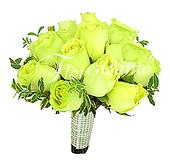 Rosas verdes importadas e delicada folhagem com acabamento em fita.