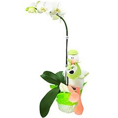 Celebração de uma vida nova com estilo - linda orquídea phalaenopsis branca com uma charmosa cegonha que carrega em seu bico um ursinho e votos de muita saúde, paz e alegria ao novo bebê.