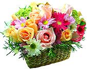 Uma composição super delicada, contendo rosas importadas e nacionais, gérberas e flores do campo em perfeita harmonia.