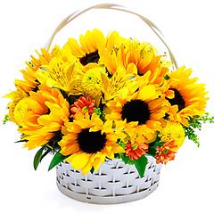 Cesta composta de radiantes girassois e flores mistas em tons de amarelo.