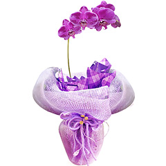 Maravilhosa composição com orquídea plalaenopsis plantada lilás adornada por telas, papéis e cordões. Moderna e impactante.