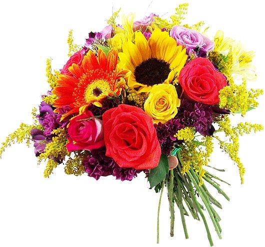 Bouquet - Positivism
