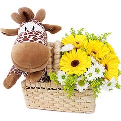 Uma charmosa girafa de pelúcia vêm trazer flores para alguém especial!