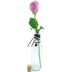 Uma original garrafa para uma linda rosa nacional solitária e um cordão com a pedra Ametista, que é considerada a pedra da sabedoria equilibrada e humildade, trazendo muita energia espiritual e representando o signo de Aquário.