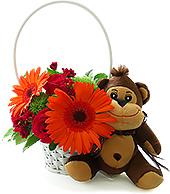 Alegre cestinha de flores com rosas e gérberas e uma pelúcia de macaquinho da Coleção Safari Baby.