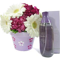 Delicado arranjo floral em vaso artesanal pintado à mão, acompanhando um spray de ambiente ou corporal aroma algodão de Natura.