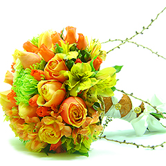 B.Noiva Rosas Laranja Anastácias