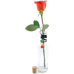 Uma original garrafa para uma linda rosa nacional solitária e um cordão com a pedra ágata vermelha, que é a pedra da proteção e amizade e ajuda no desenvolvimento da coragem e autoconfiança, representando o signo de Leão.