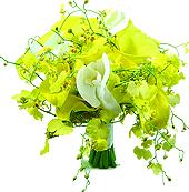 B.Noiva Callas & Orquídeas
