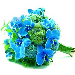 B.Noiva Orquídea Blue Mystique