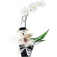 Uma linda orquídea phalaenopsis branca toda decorada em tons de branco e preto e com ursinho corinthiano exclusivo.
