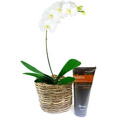 Linda orquidea phalaenopsis branca plantada e acompanhada de um shower 3 em 1 Men Boticário.