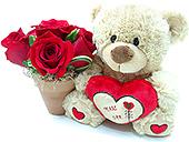 Gracioso ursinho antenado no amor. Acompanha um vasinho rústico contendo rosas nacionais vermelhas
