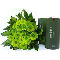 Dois deliciosos produtos da linha Urbano de Natura com um bouquet de exóticas flores do campo verdes.