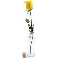 Uma original garrafa para uma linda rosa nacional branca solitária e um cordão com a pedra Ágata Natural que têm o poder de harmonizar yin e yang, as forças positiva e negativa e que mantém o equilíbrio do universo, com grande poder de cura, tonificando e revigorando o corpo,representando o signo de gêmeos.